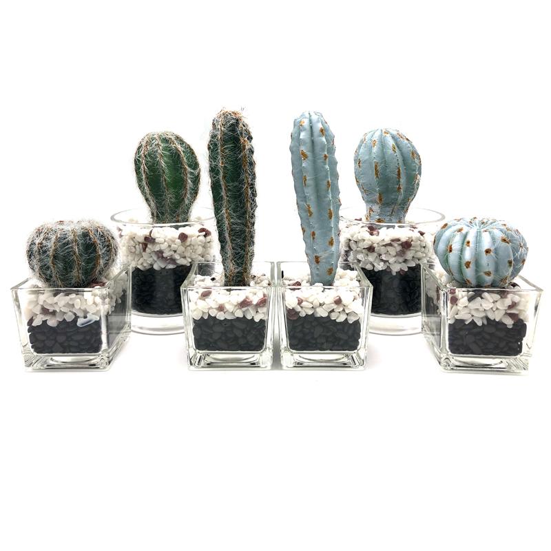 Cacto artificial na decoração suculenta do falso decorativo do potenciômetro do vidro para a casa ou o escritório