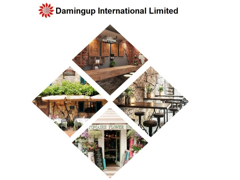 Damingup International Limited